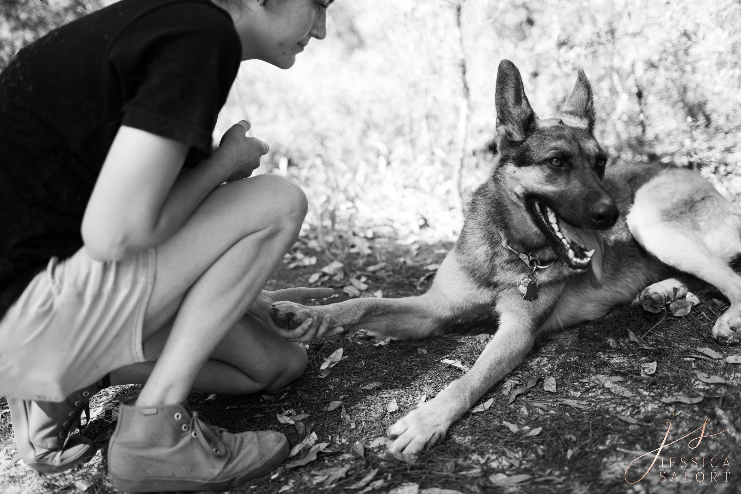 Pensacola Pet Photographer