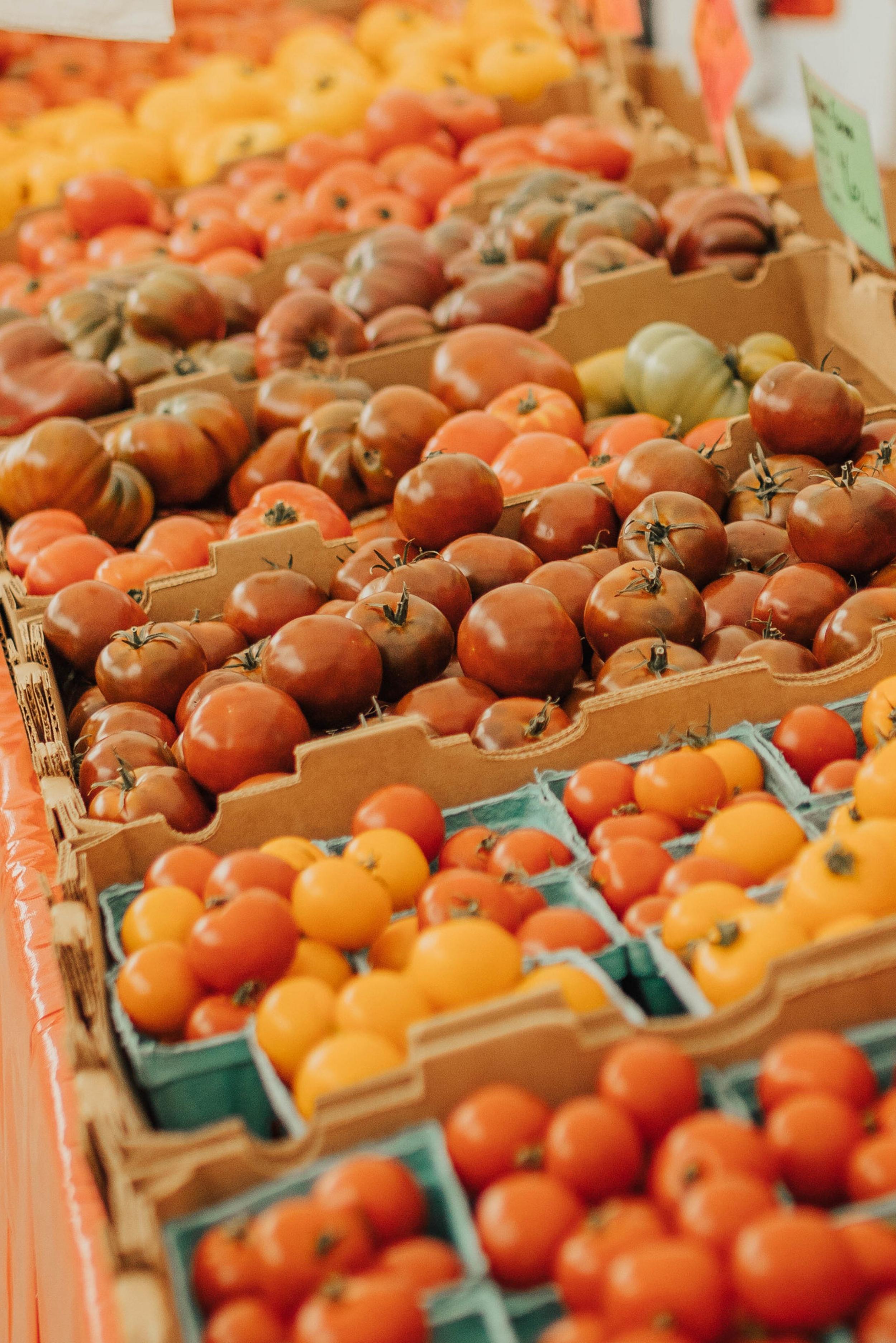 farmers market tomatos