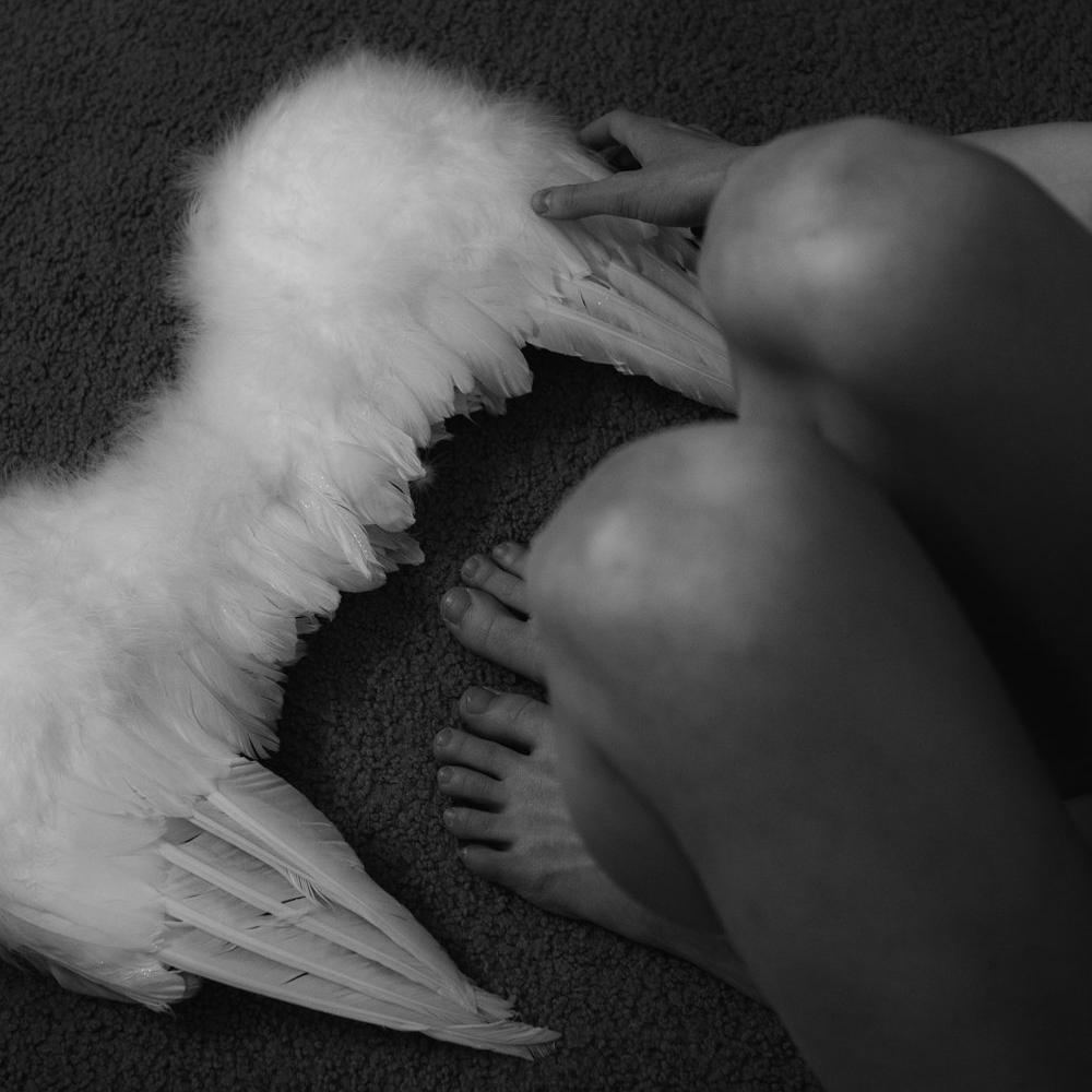 Wings1.jpg
