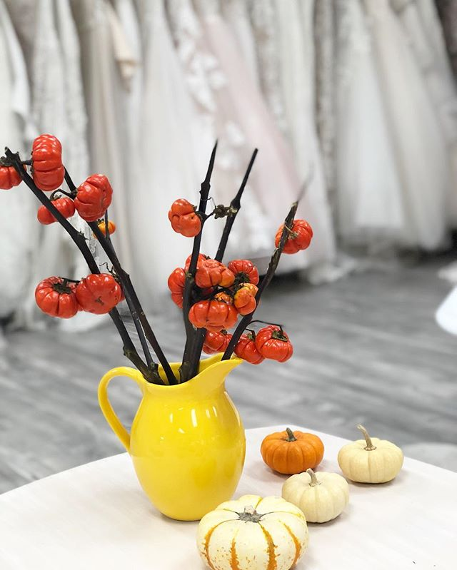 Pumpkin vibes in the store today 💭 Can you tell we're so excited for the holidays!?! 🎃 . . . . . . #halloween #thanksgiving #holiday #pumpkin #weddingdecor #bridalparty #engaged #weddingflowers #bridesmaid #love #weddingdress #Floral  #bride #wedding #photography #weddingdessert #eventplanner #weddingplanner #bridalsalon #instagood #bridesmaid #bridesmaids #fashion #bridalparty #engaged #inspiration  #weddingstore #weddingdressstore #LA