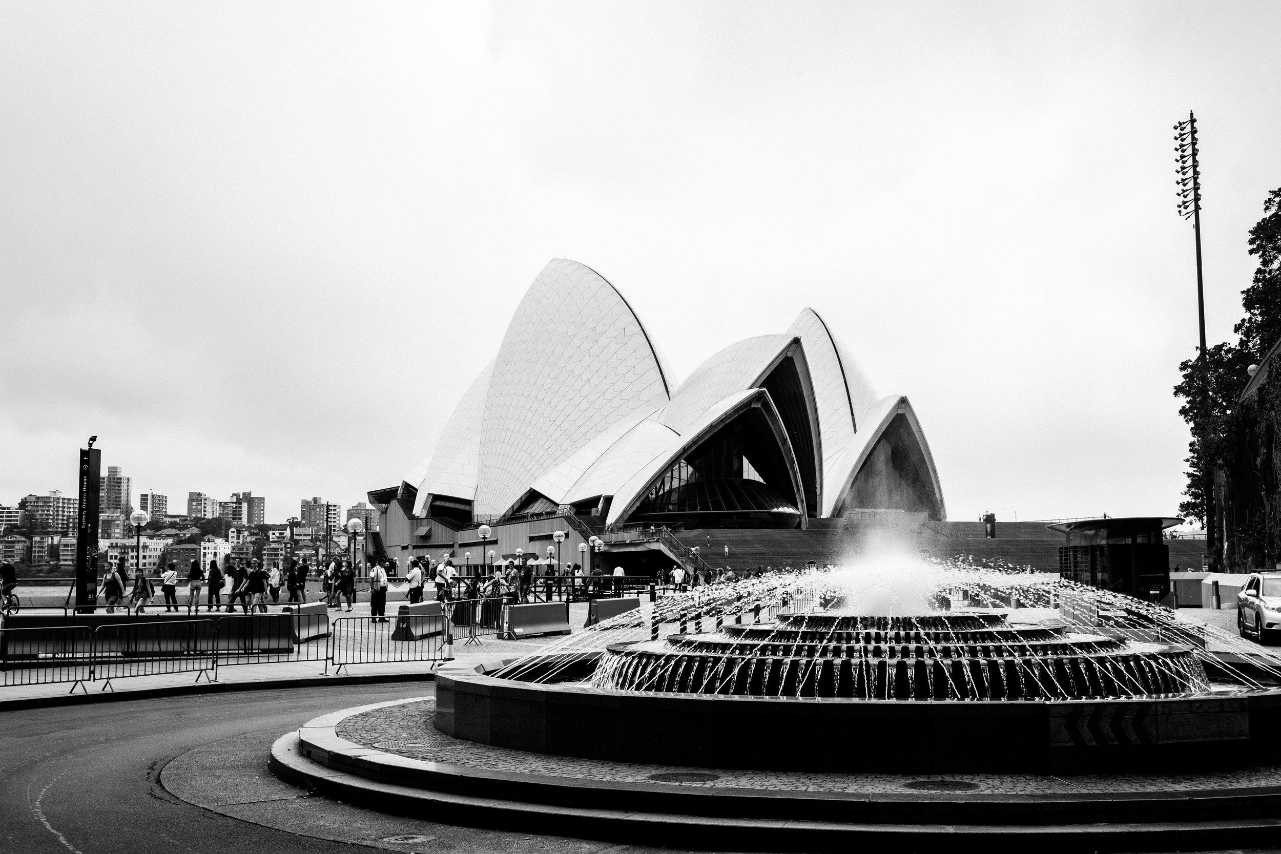 Aussie (2 of 27).jpg