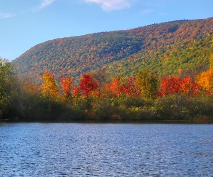 Brilliant Fall tree colors along Honeoye Lake with water in foreground