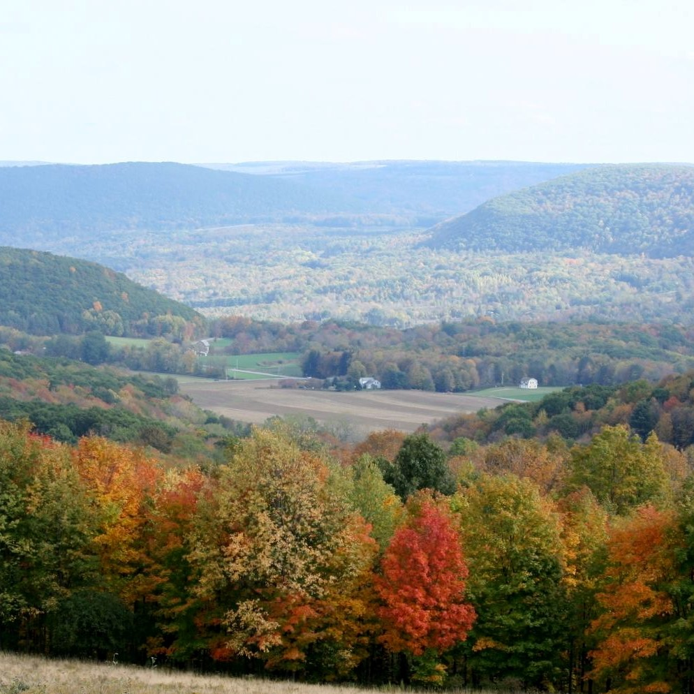 Fall tree colors from a hilltop looking down to valley in Finger Lakes area