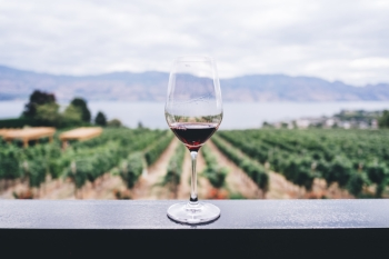 Wine glass on deck railing with grape vineyards, water, and hills in background