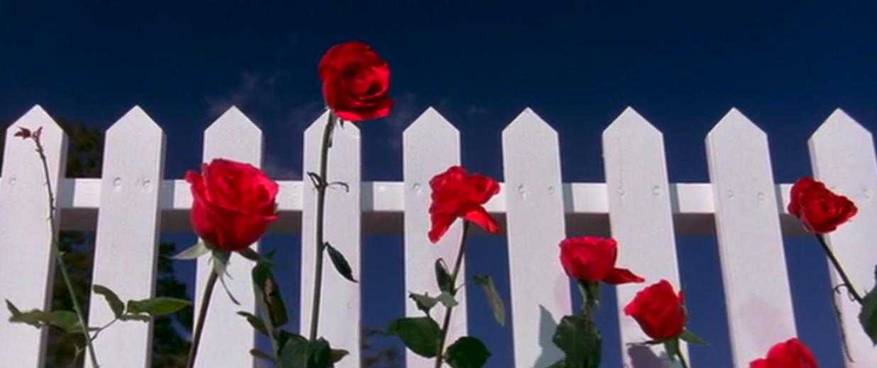 """David Lynch- """"Blue Velvet"""" (1986)"""