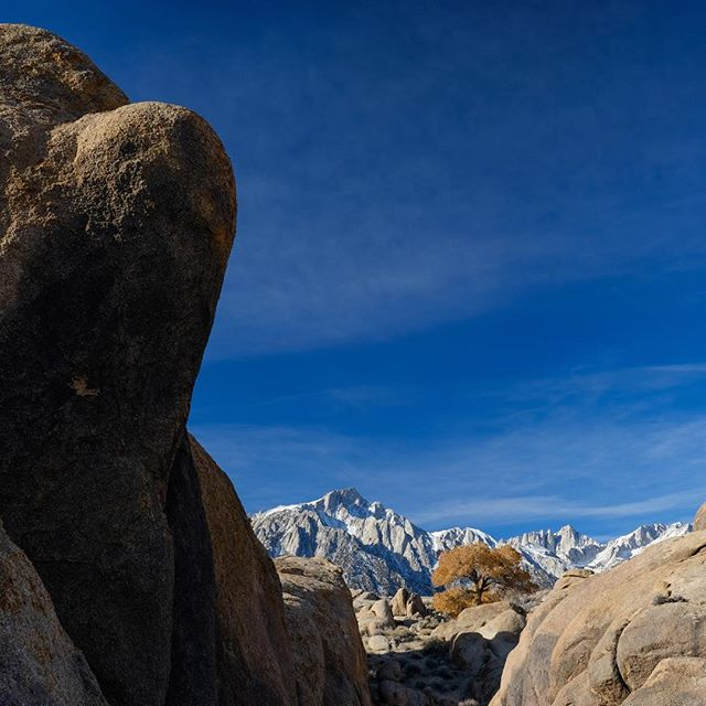 Mt Whitney lookin crisp —————————————— #easternsierra #mtwhitney #owensvalley #camping #alabamahills #california #roadtrip #fuji #fujifilmxh1 #shotonfuji #adventure #landscape #landscapephotography #nature #desert #fallcolors #fallcolours #landscapephotographer #ontheroad #wanderlust #xphotographer #astia #fujifilmxseries #23mmf2 #squareformat #winter #fujixh1