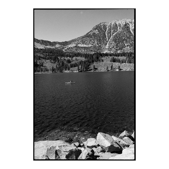 Even in the high country, California summers die late ———————————————— #filmfeed #film #analog #buyfilmnotmegapixels #kodak #tmax #selfscan #blackandwhite #blackandwhitelandscape #landscape #landscapephotography #contrast #nature #mountains #publiclands #nationalforest #summer #analogphotography #blackandwhitephoto #35mm #contax #zeiss #madewithkodak #naturefirst #photographresponsibly
