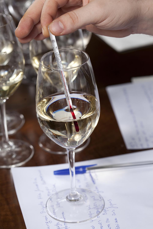 Wine tasting-testing the temperature