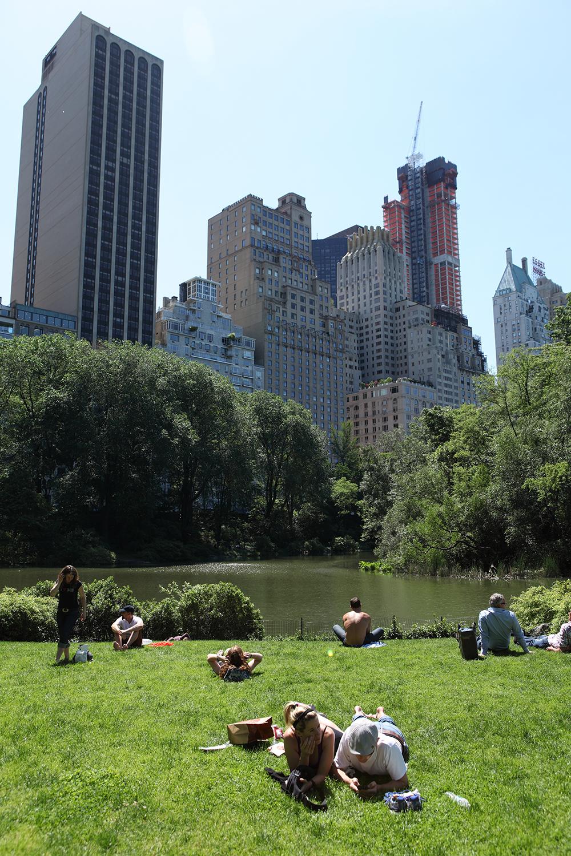 U.S.A. / New York / Central Park