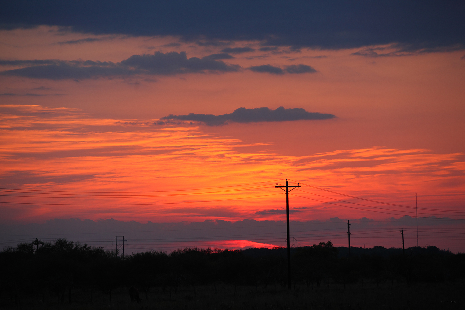 U.S.A. / Texas / Victoria / Sunset in Texas