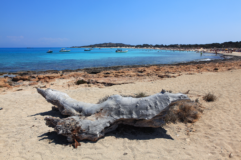 Greece / Crete / Chrysi