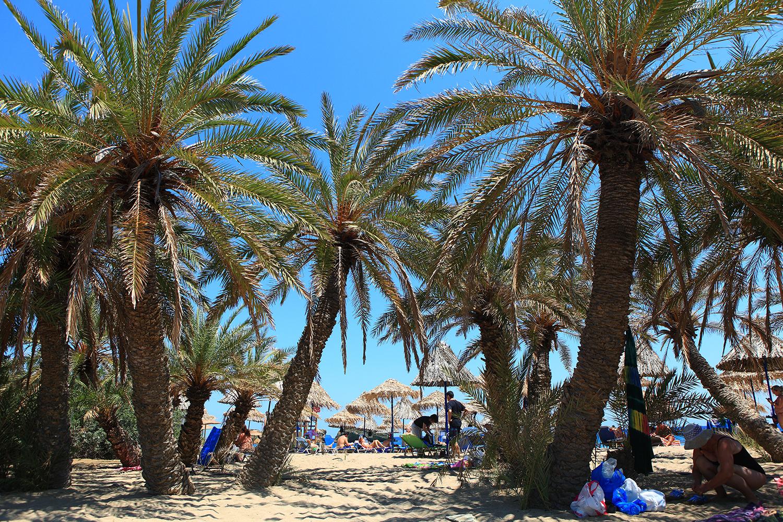 Greece / Crete / Vai