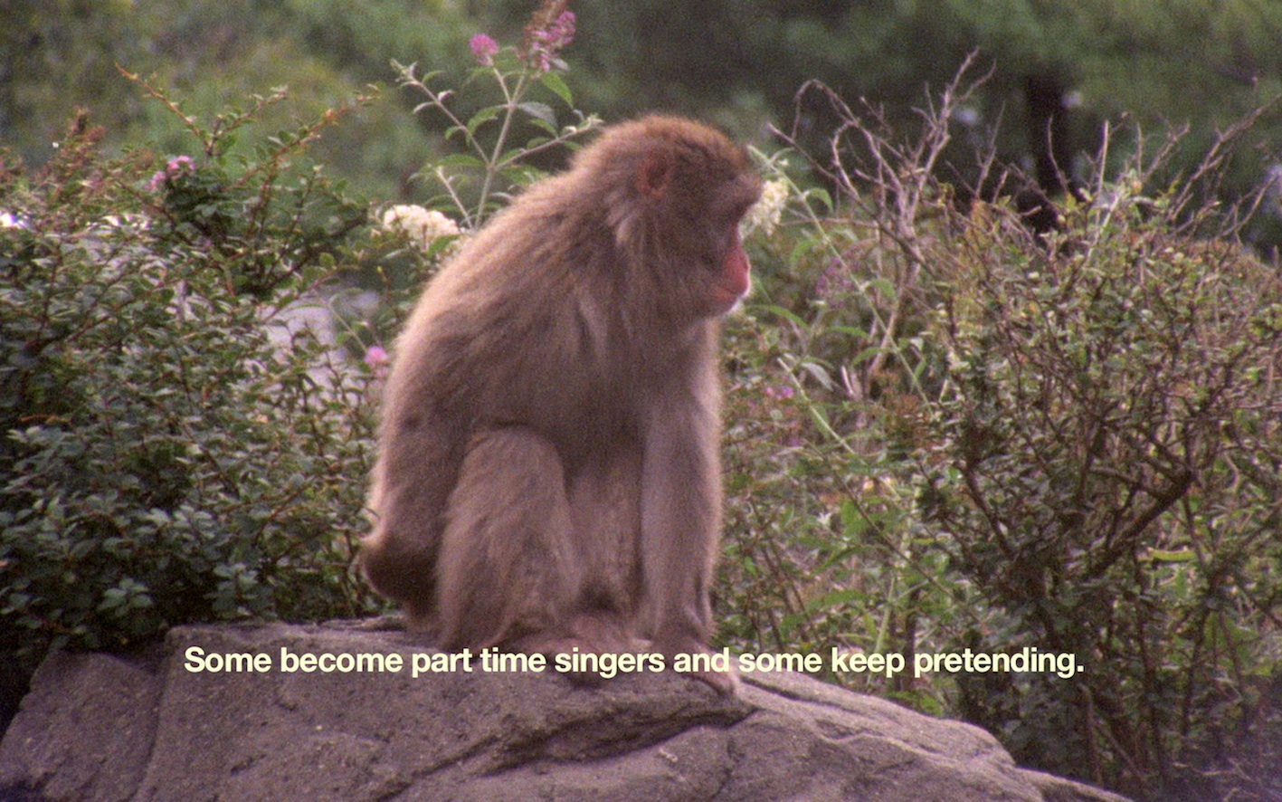 Film still from The Everyday Ritual of Solitude Hatching Monkeys by Basim Magdy. Courtesy of the artist and Gypsum Gallery