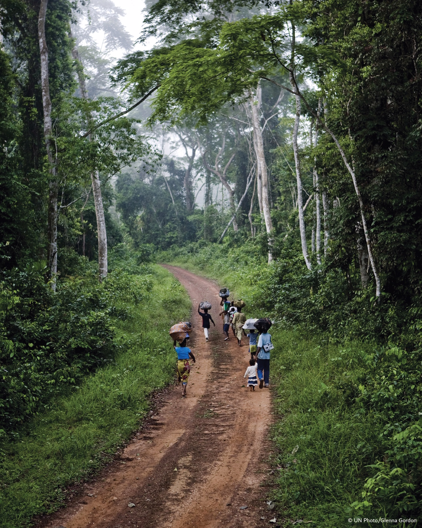 A family fleeing violence in the Ivory Coast walk along a forest track in south-east Liberia. Courtesy UN Photo / Glenna Gordon