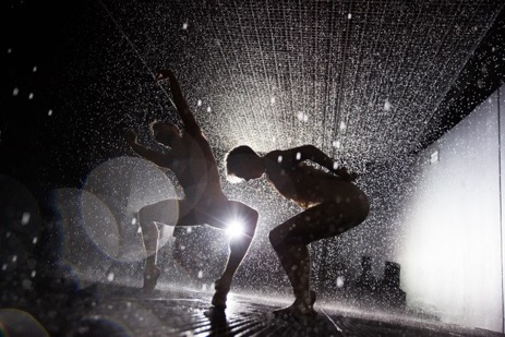 Company Wayne McGregor,  Rain Room , 2012. Performance view:  Rain Room  installation, The Curve, Barbican, London, 2012. Courtesy of Random International. Photo: Sidd Khajuria