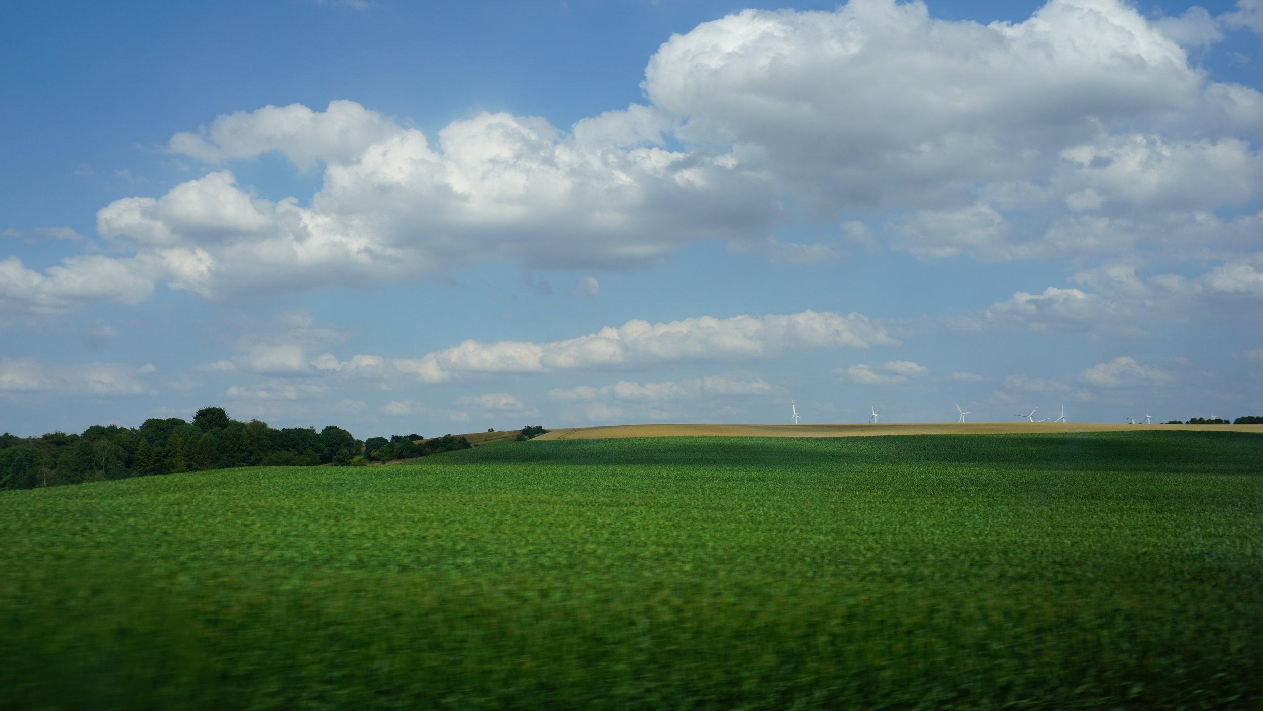 Green Field.JPG