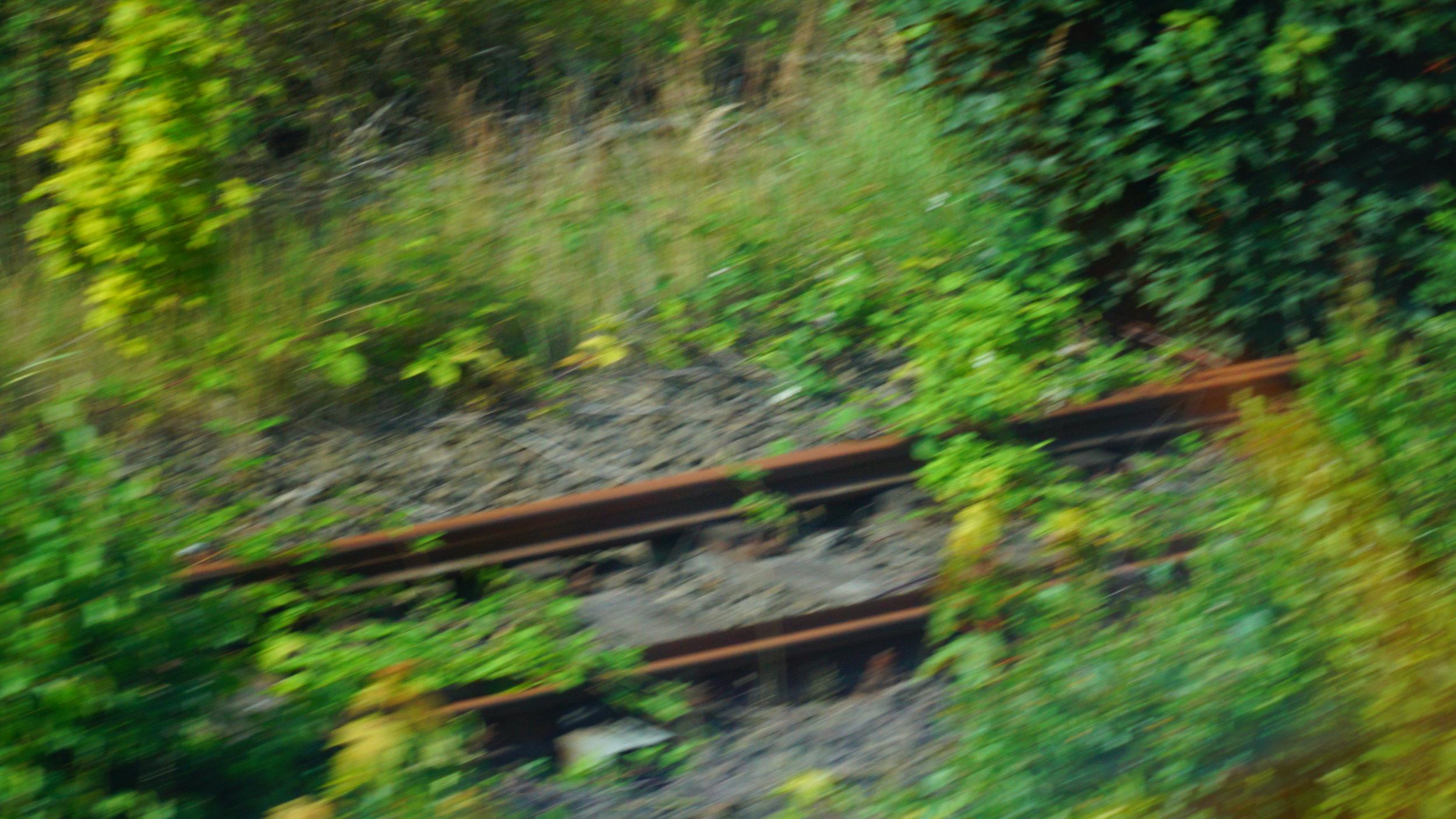 Glimpse of Tracks.JPG