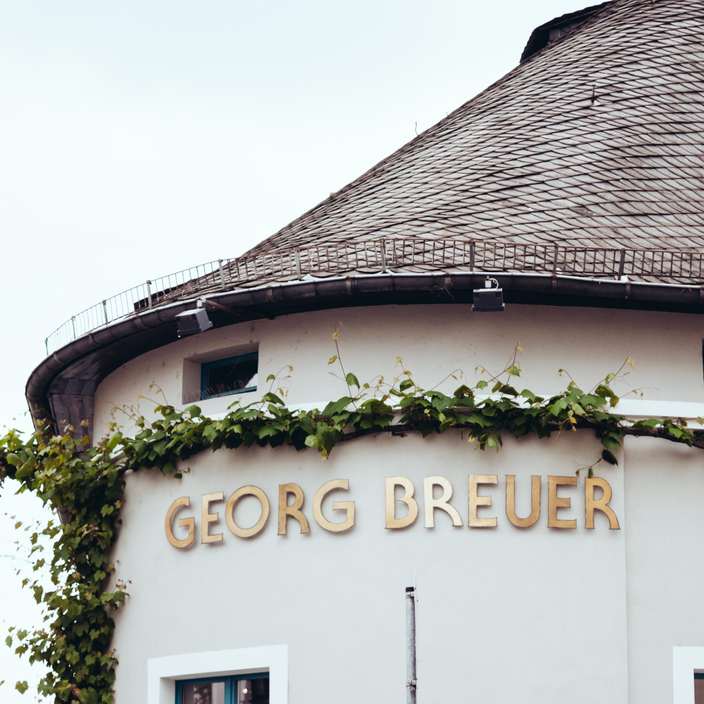 Riesling-Hero-Georg-Breuer-9137.jpg