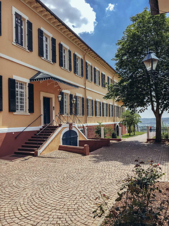 Riesling-Hero-Schloss-Johannisberg-4750.jpg