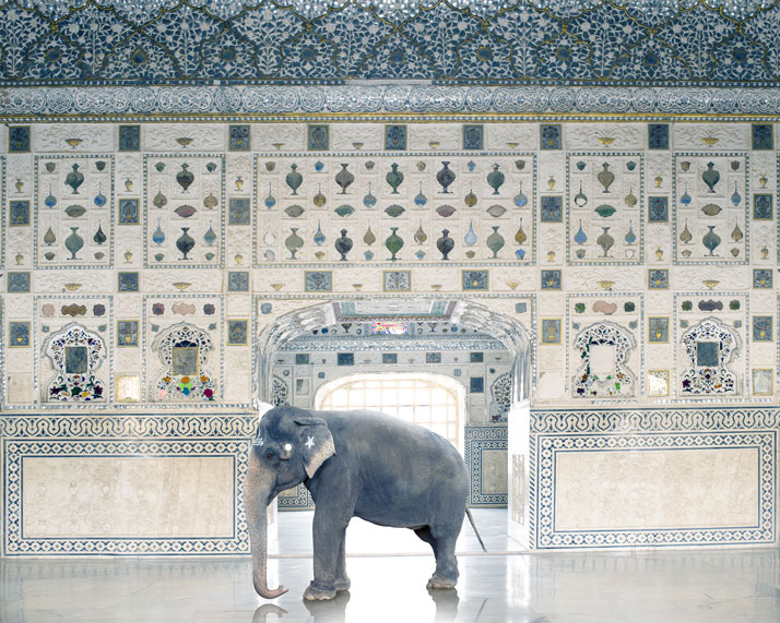 10_Photographer_Karen_Knorr_India_Song_yatzer.jpg