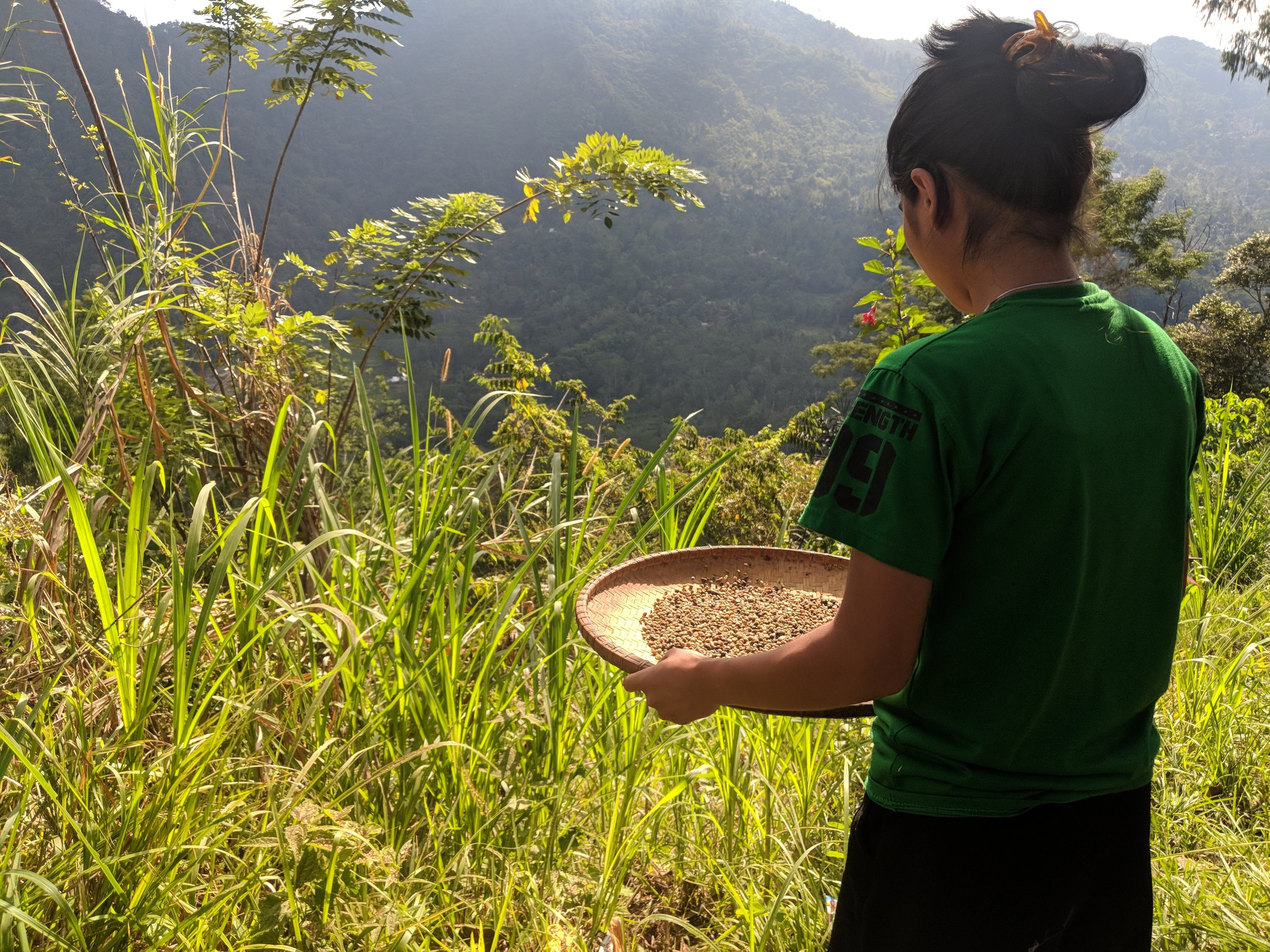 Our host family invited us to join them as they prepared coffee beans for use. They only harvest a small amount of coffee, to be used for personal consumption, and to give as a gift at funerals.