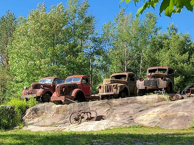 Driving around back roads in #muskoka today in between shoots and look what I found up on a hill... if those trucks could talk, the stories they'd tell  #oldtrucks #classicrust #oldroads #restingplace #muskokabackwoods #bonnielake #passingtime #gorgeousweather #chevypickup #fordpickup #michalpasco #advertisingphotographer #iphone
