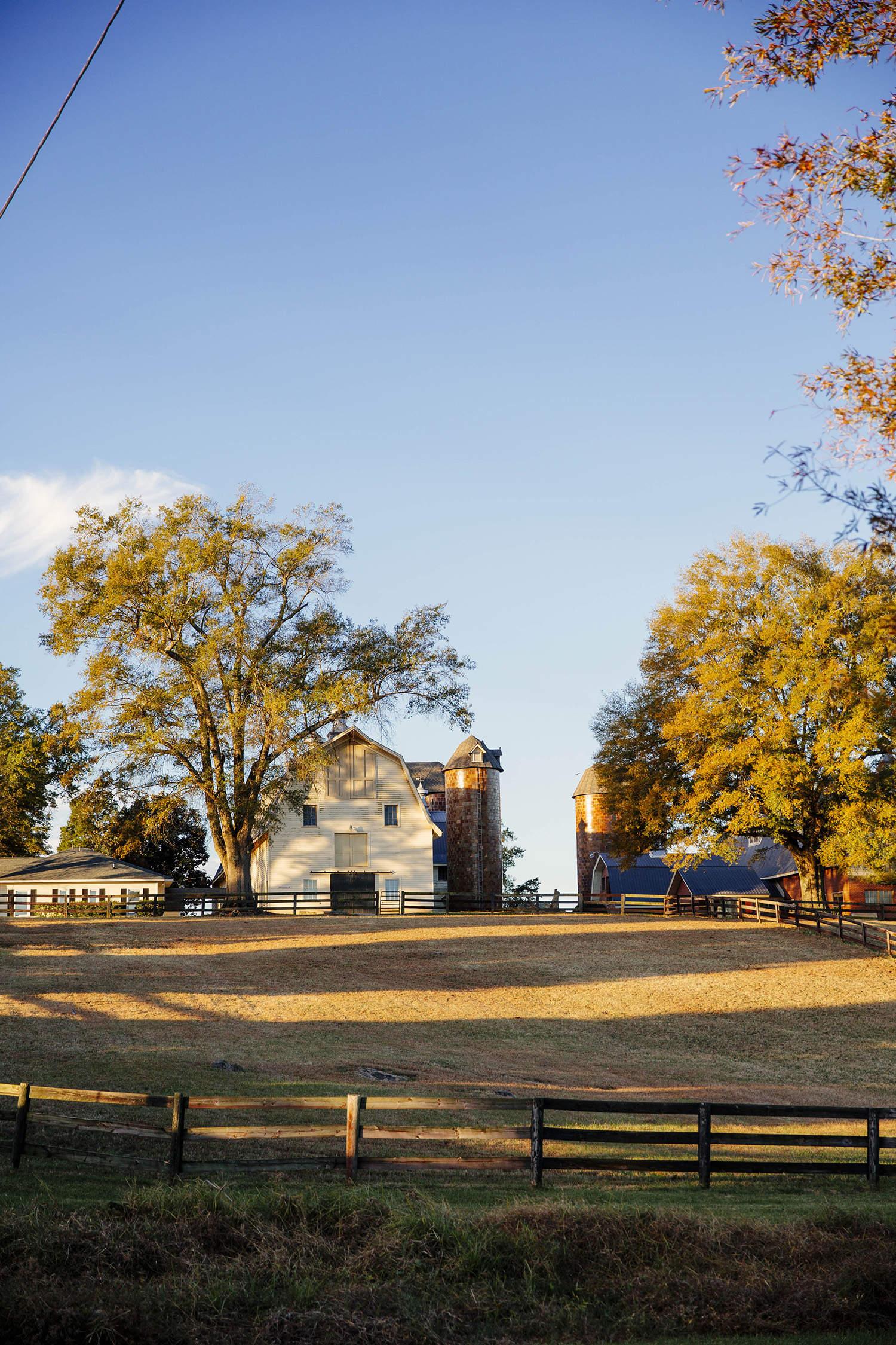 Quail Roost Farm