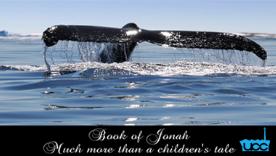 Book of Jonah     The Book of Jonah