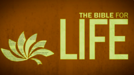 The Bible For Life     A Year-long survey through the bible.