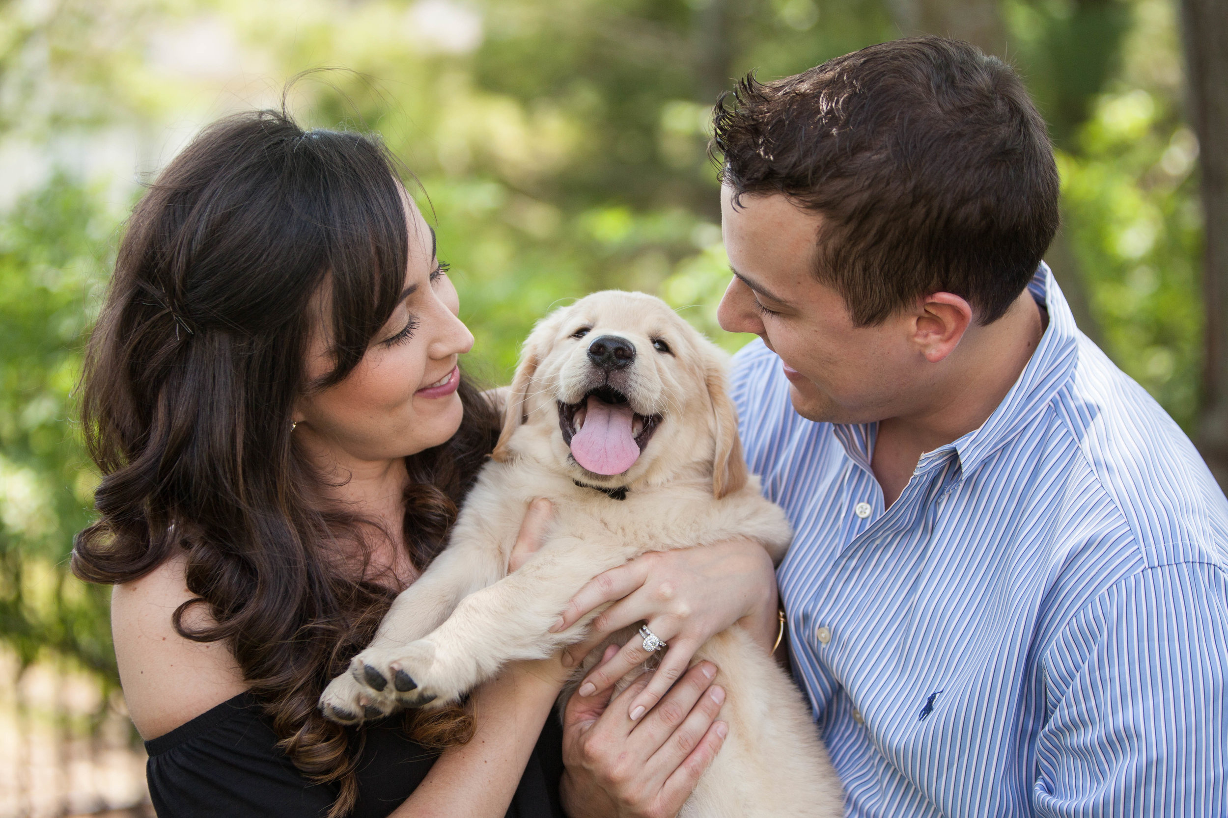 Couple with adorable puppy photo shoot