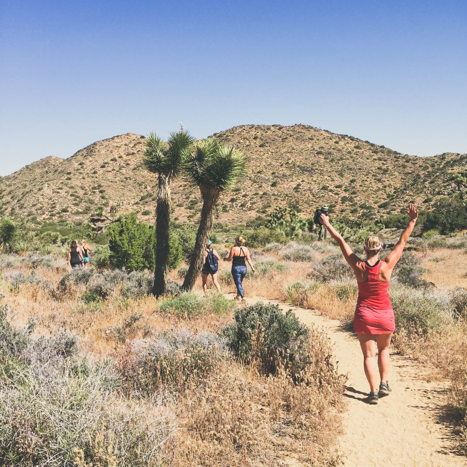 hiking-in-palm-springs.jpg