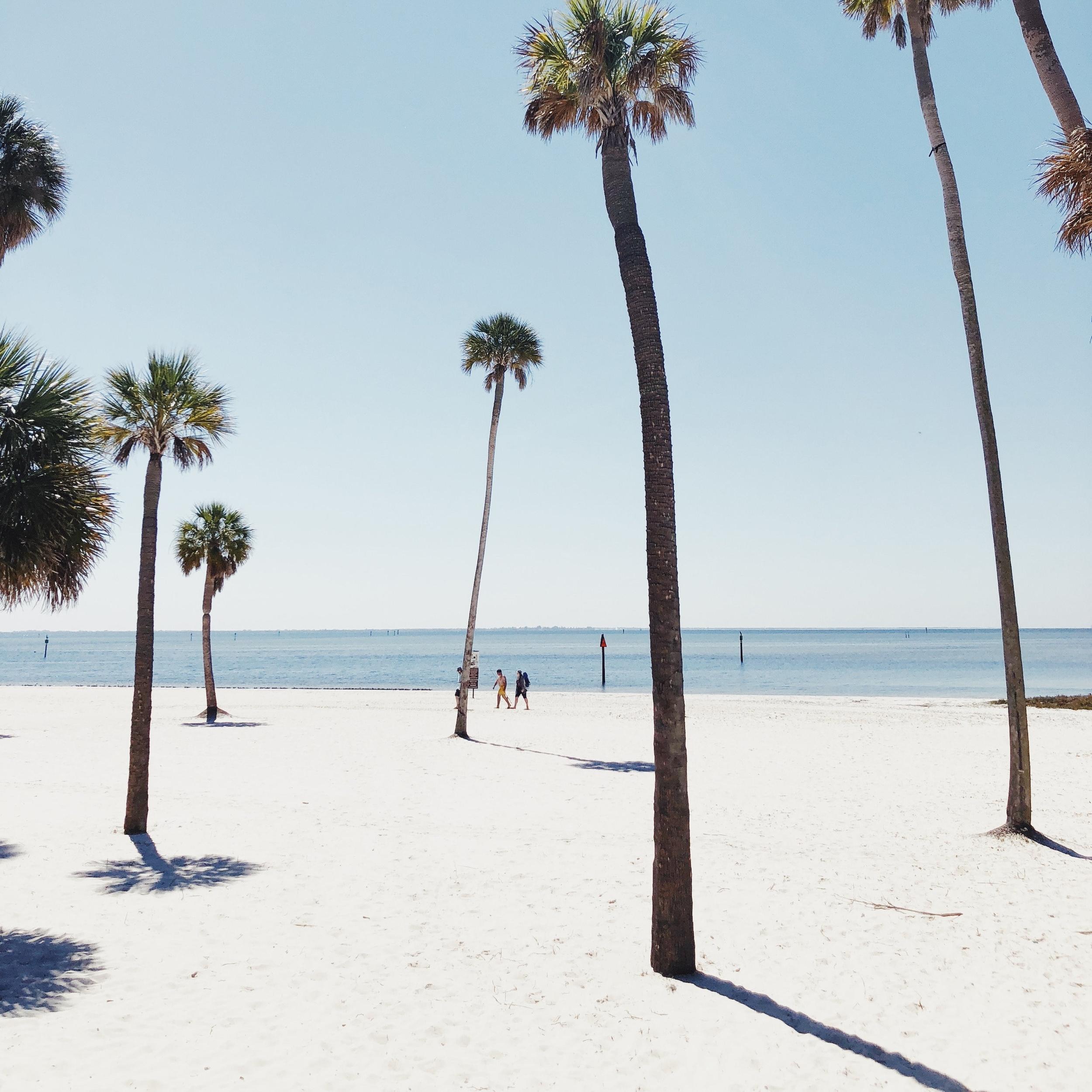 Fort Lauderdale - Megan Hardt