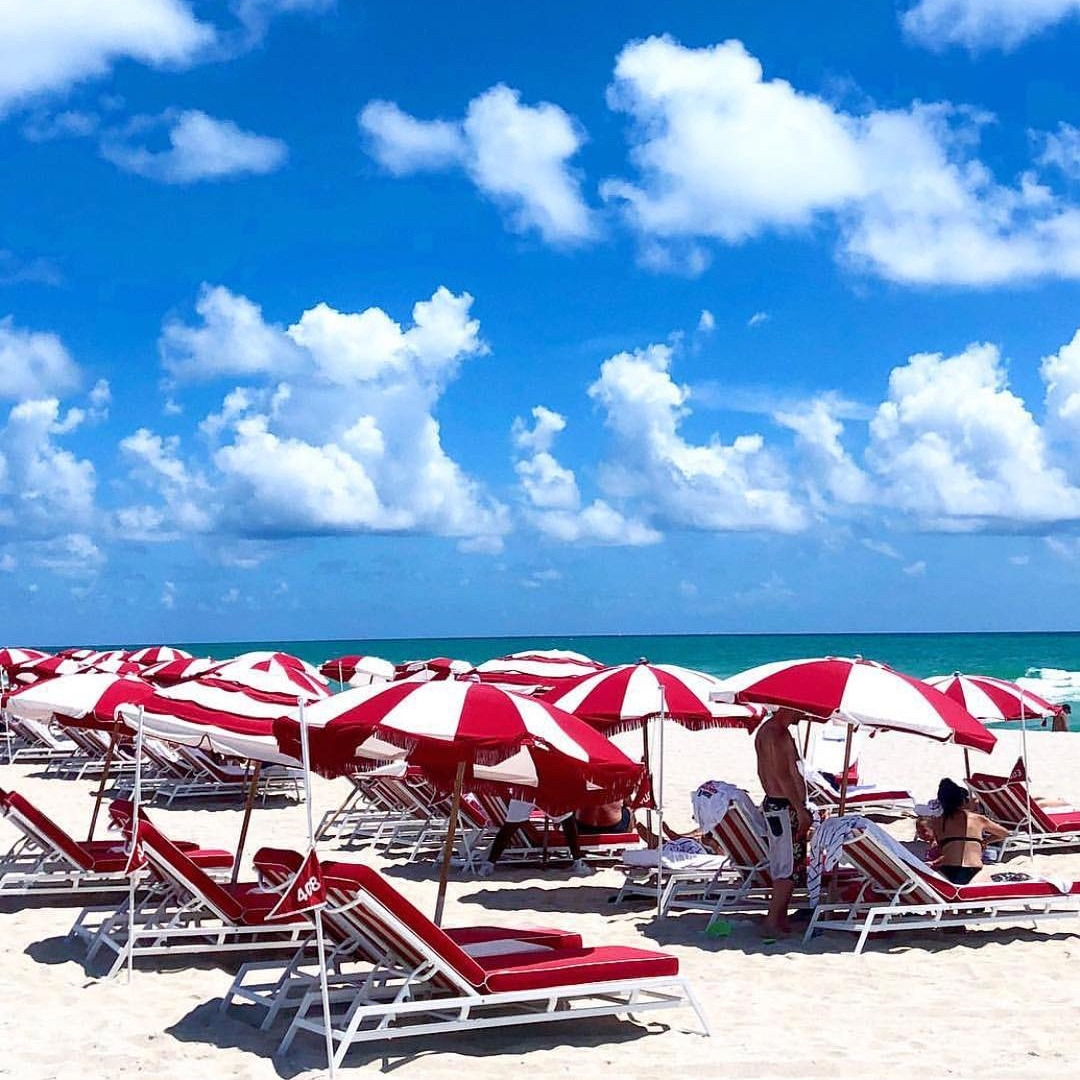 Miami - Tamara Carlyon
