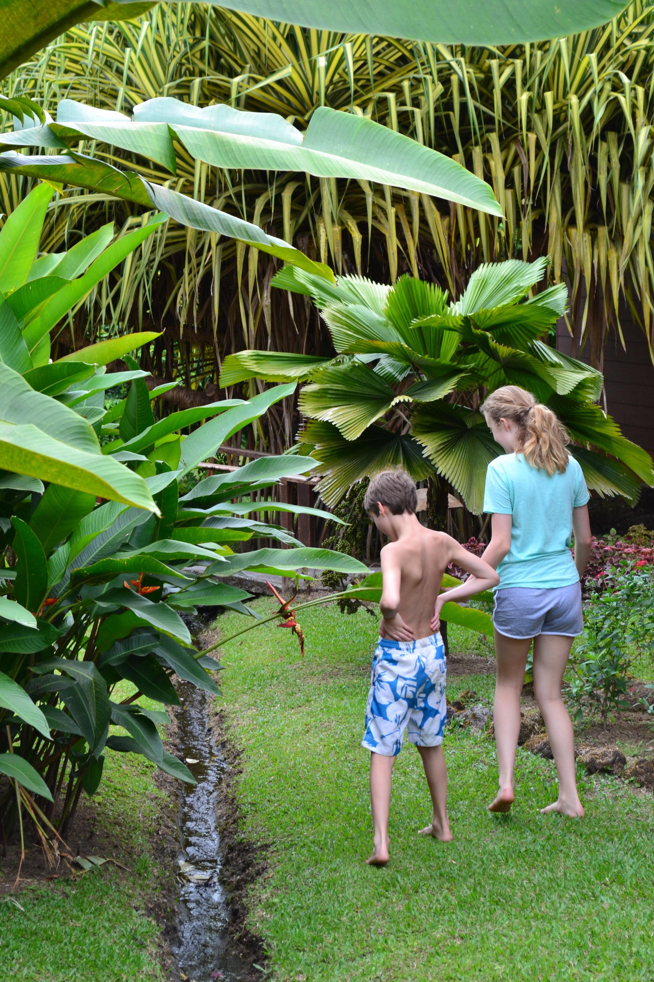 beach resorts in costa rica