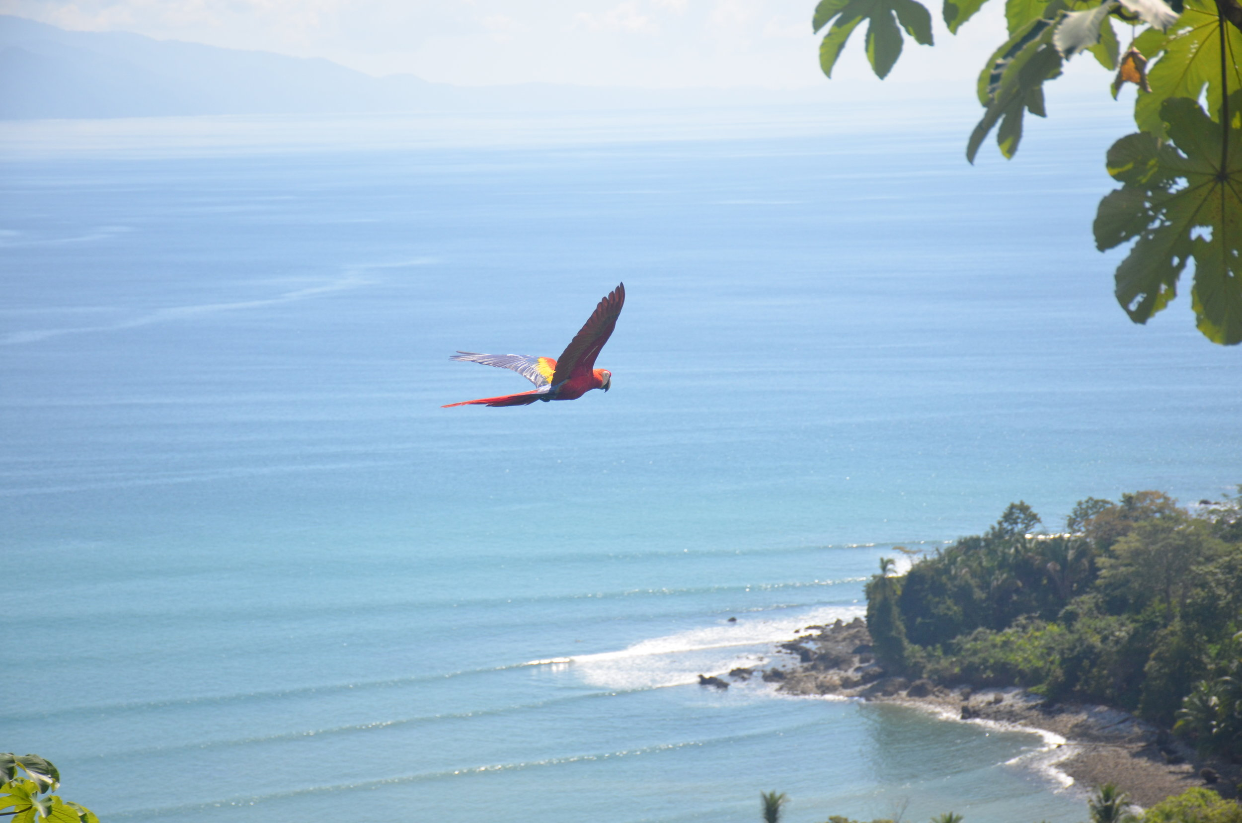 best way to travel within costa rica