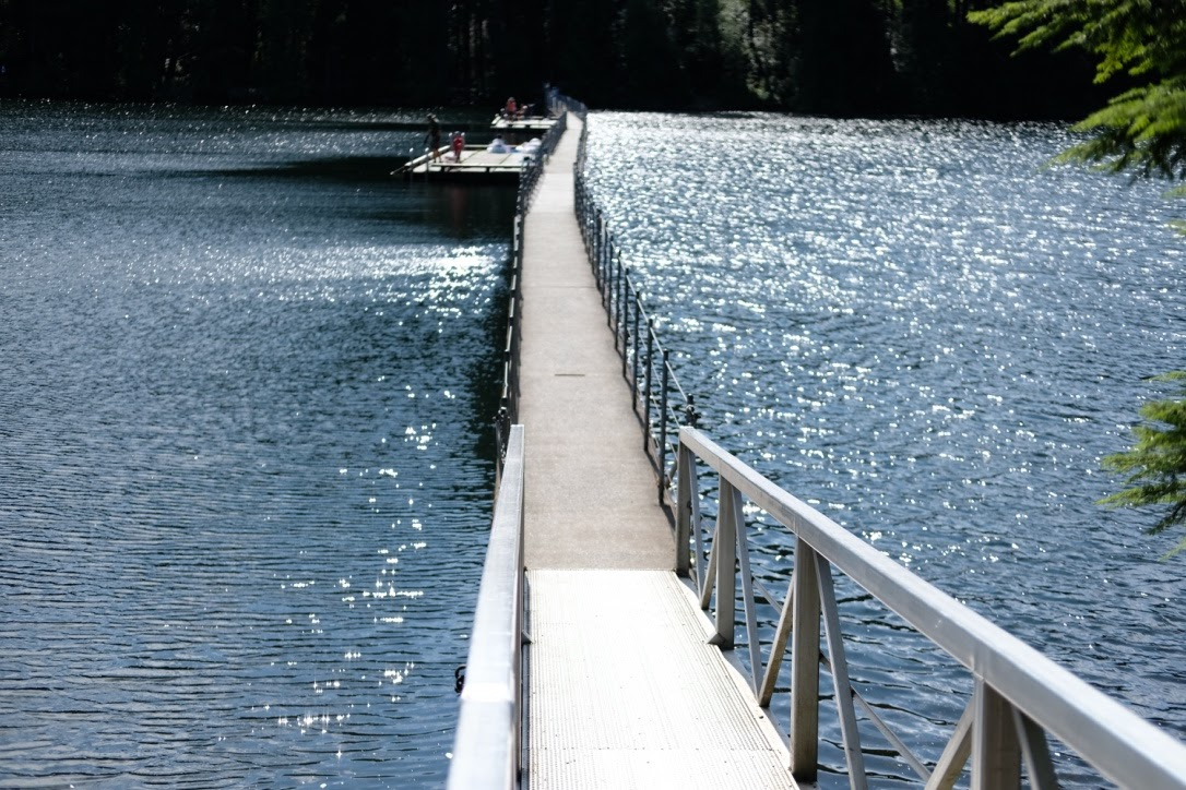 sasamat docks port moody.jpg