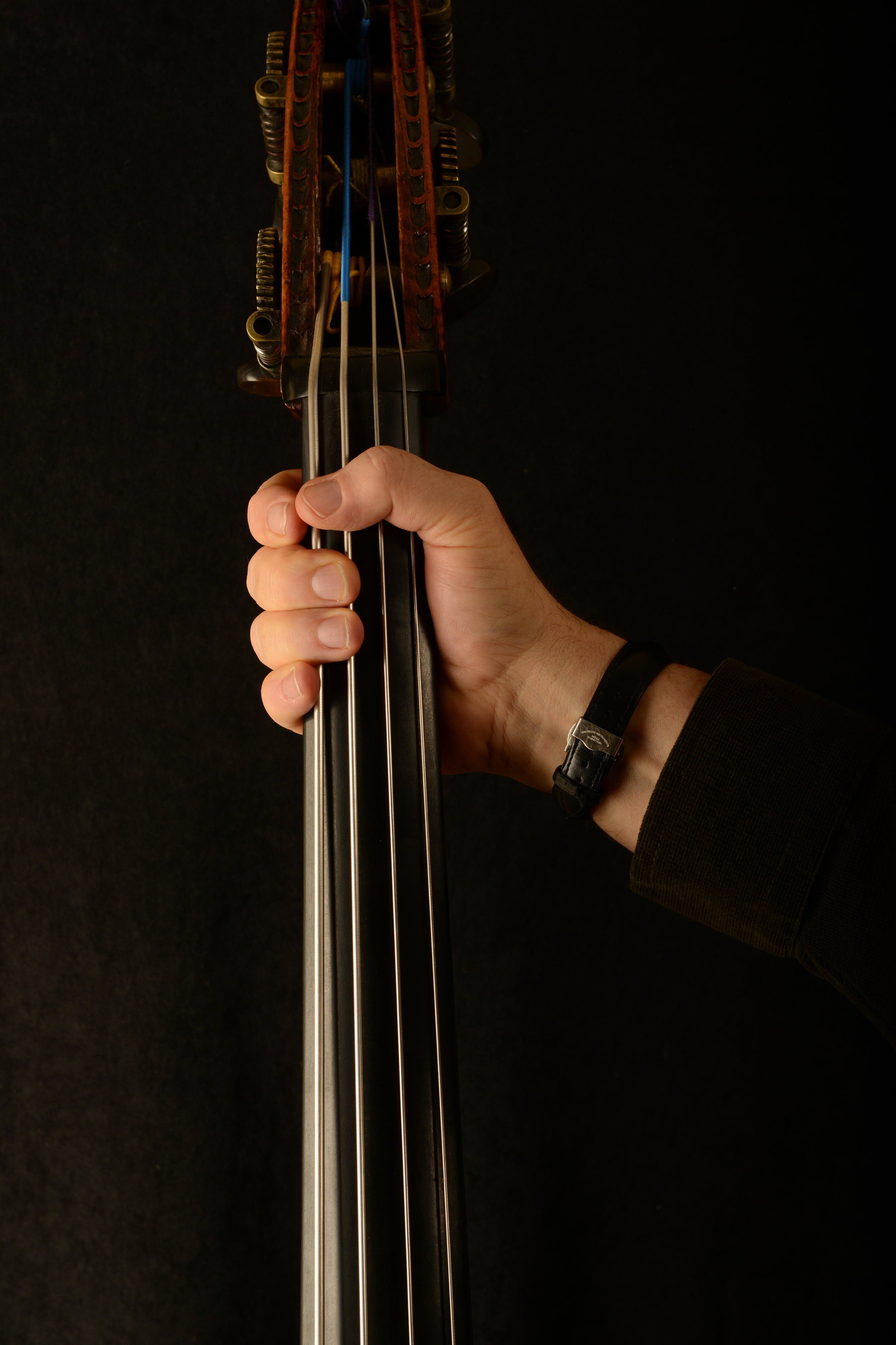 The Latest About the Bass in Fifths - by Silvio Dalla Torre