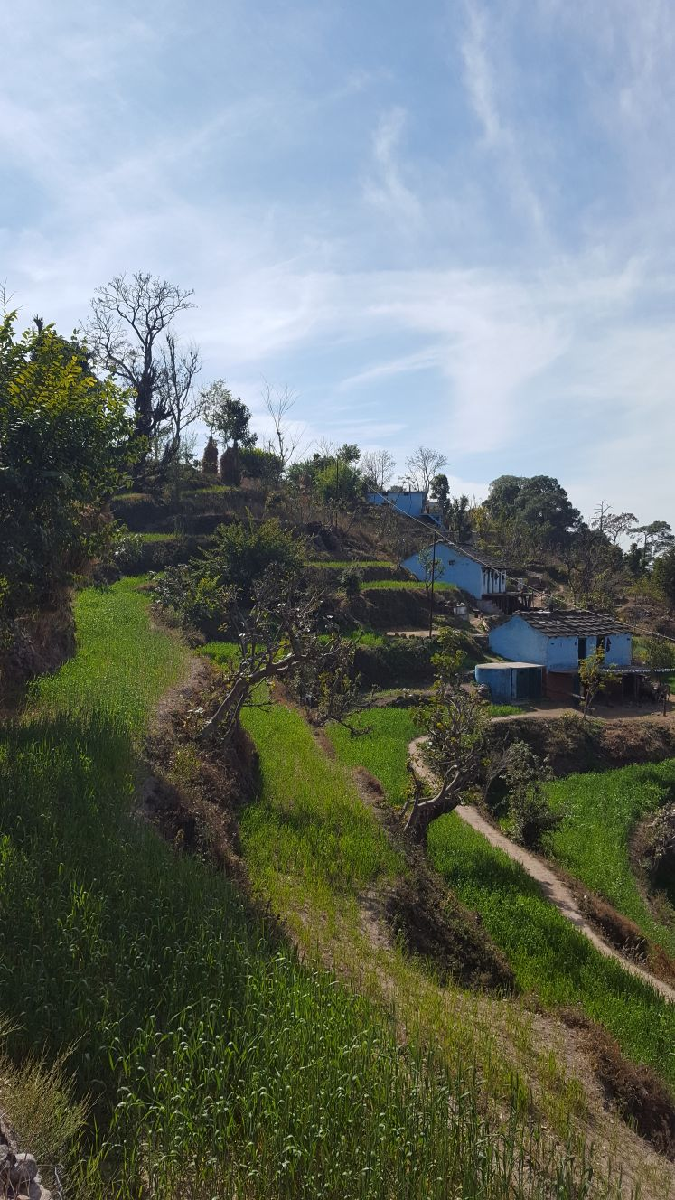 Village in the Himalayan Foothills