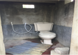 Western toilet for disabled boy