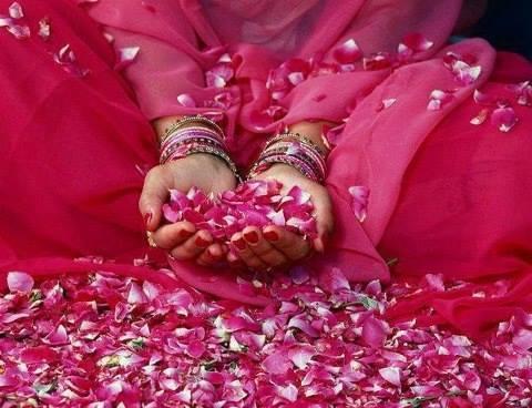 petals of grace.jpg