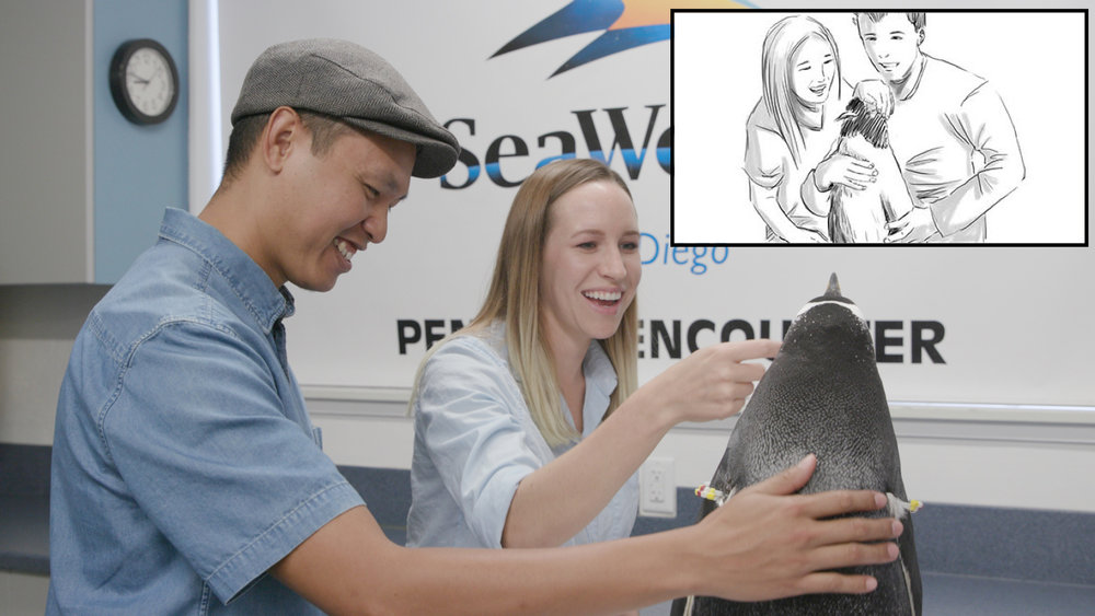 This image shows a side-by-side comparison from a recent SeaWorld shoot and the storyboard that was created to visualize the shots ahead of time.