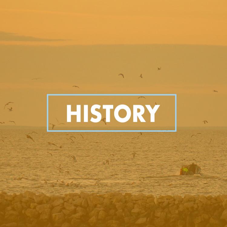 History_web.jpg