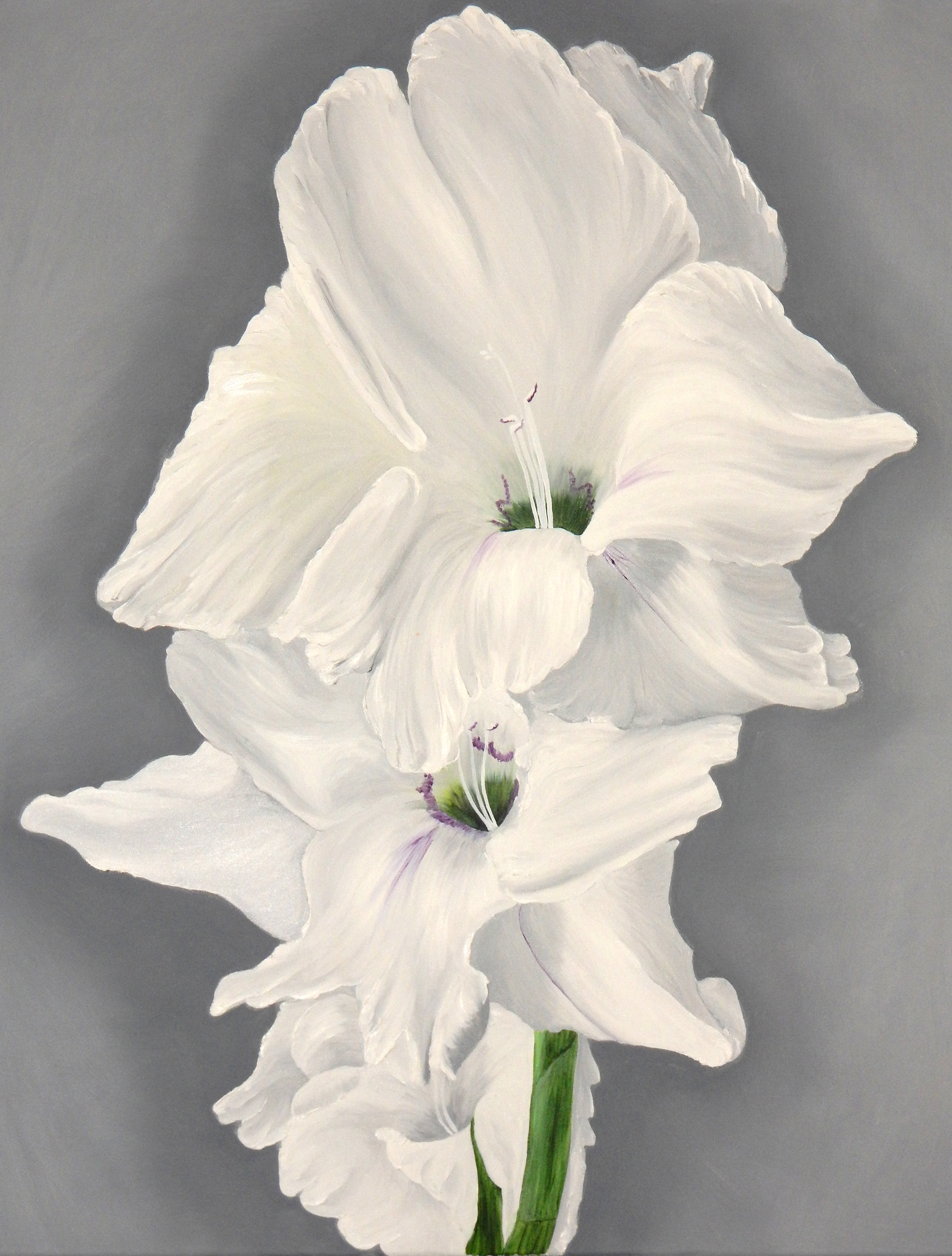 White Gladiolus Double I  2017 Oil on canvas 30 x 24 x 1.5 inches