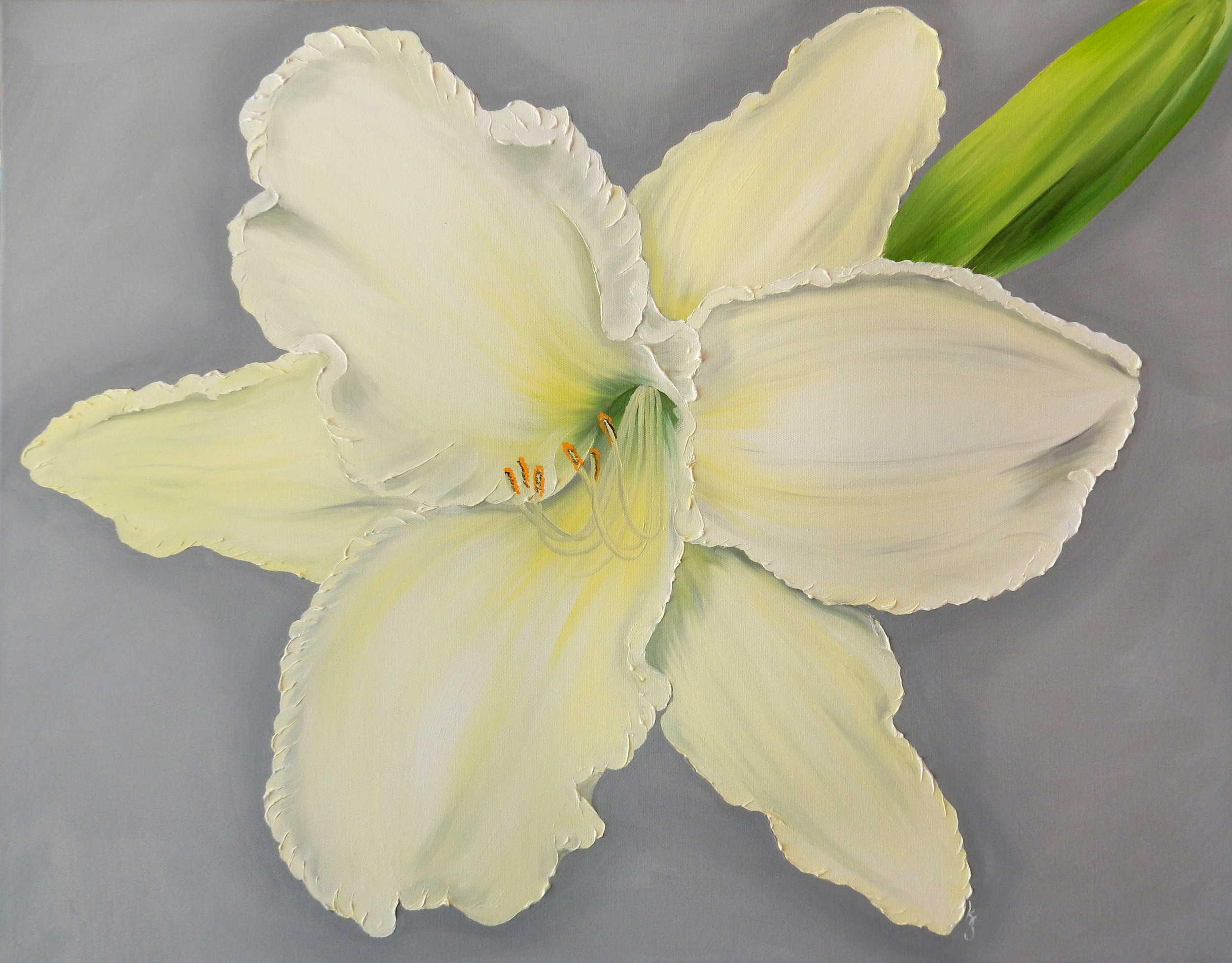 Daylily Light Yellow  2017 Oil on canvas 24 x 30 x 1.5 inches