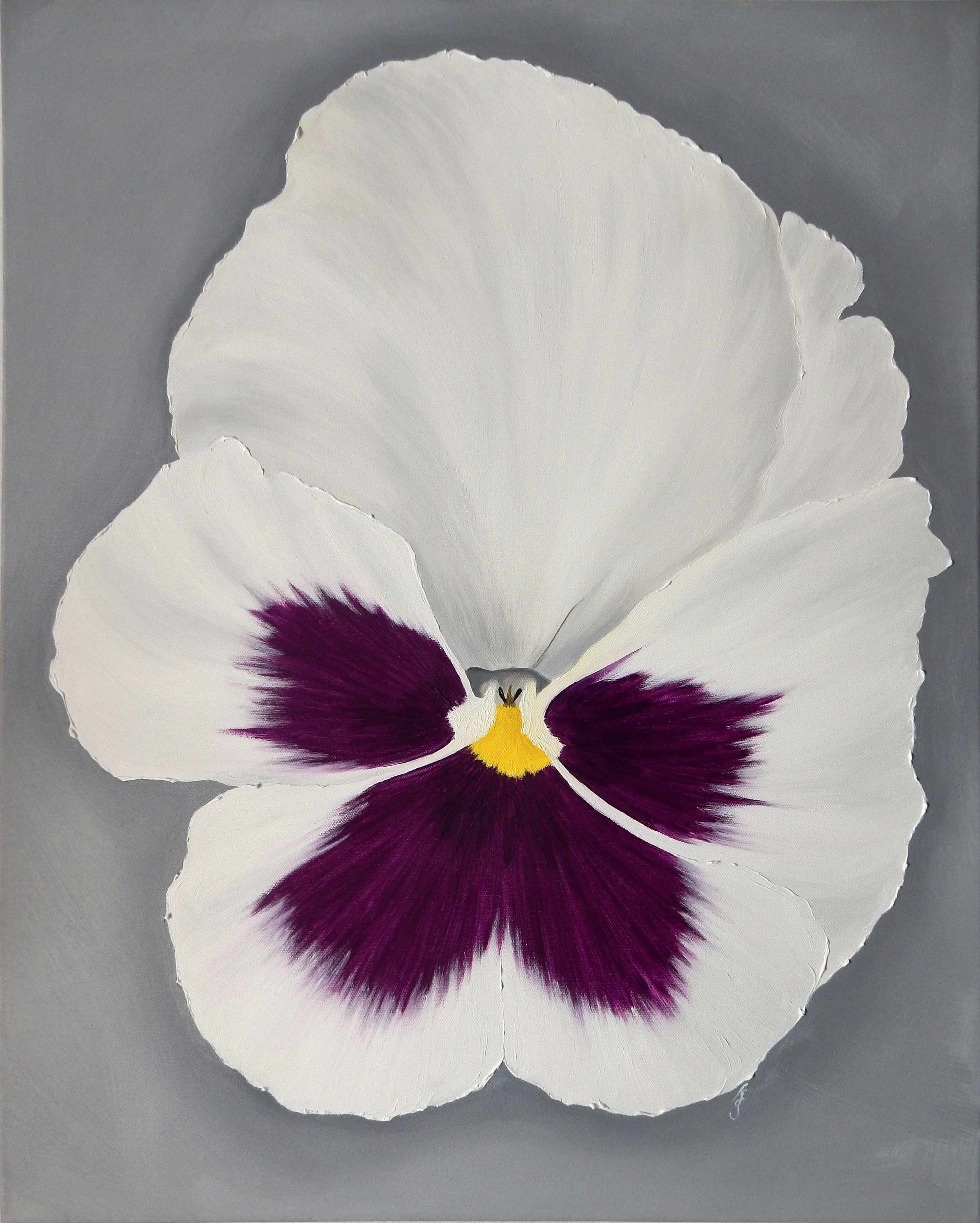 White and Purple Pansy  2017 Oil on canvas 28 x 22 x 1.5 inches