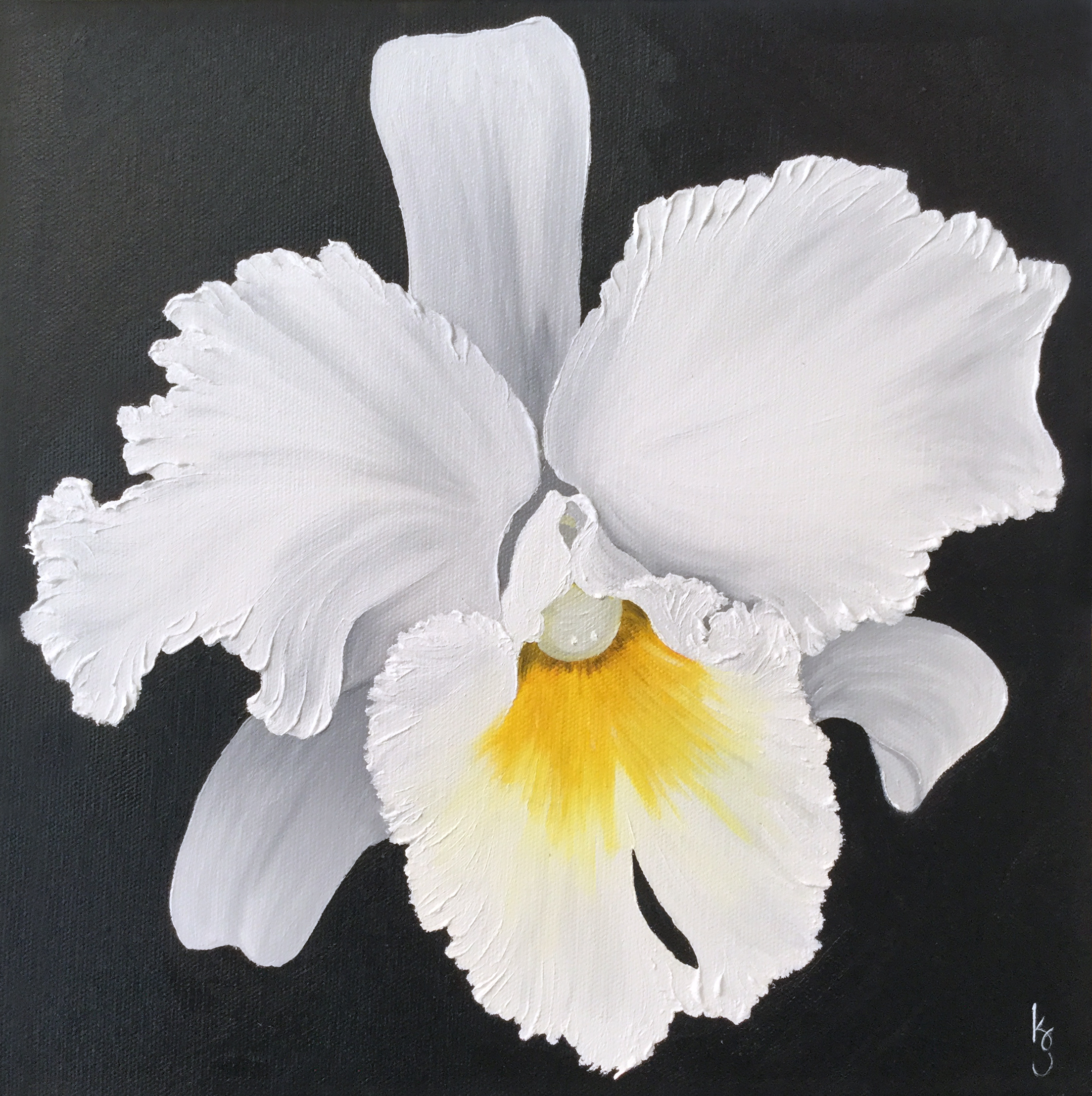 Orchid  2017 Oil on canvas 12 x 12 inches