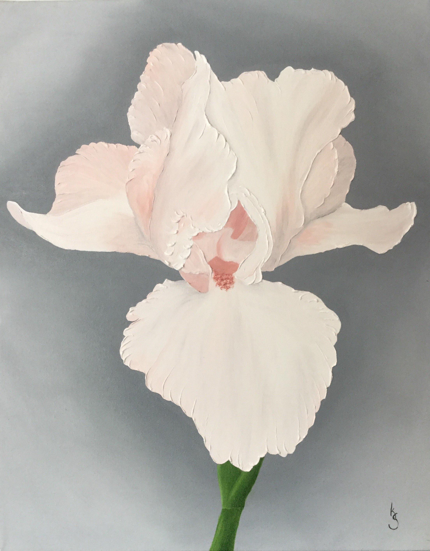 Peach Iris , 2017 201653176717 Oil on canvas 20 x 16 inches