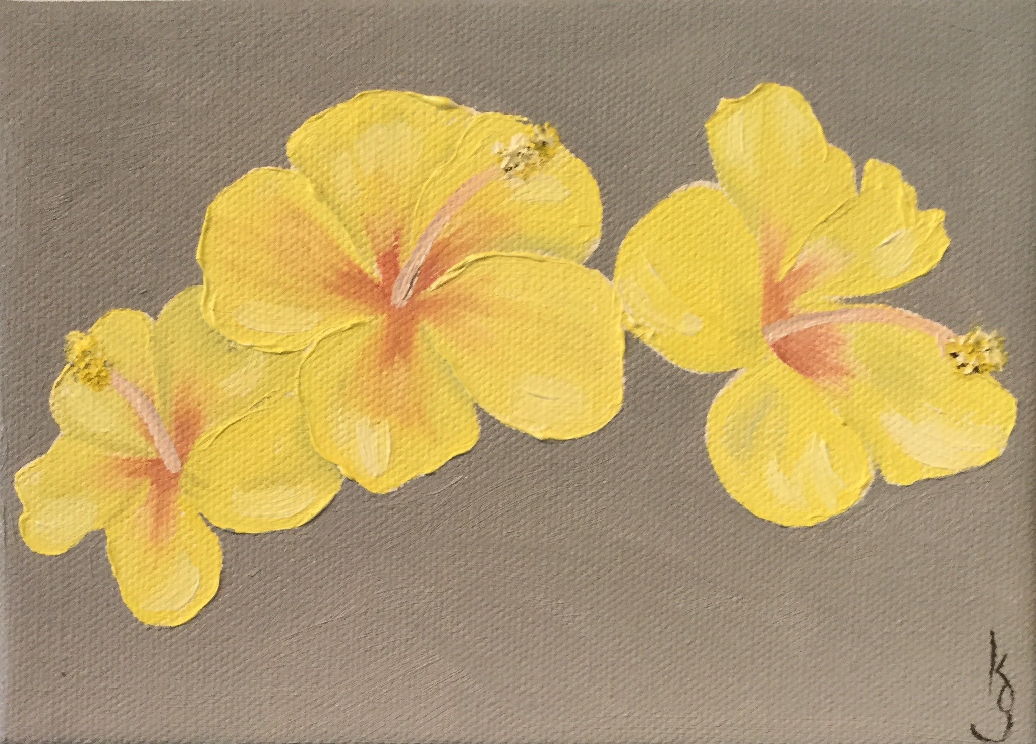 Yellow Hibiscus , 2017 572241762617 Oil on canvas 5 x 7 x 1.5 inches