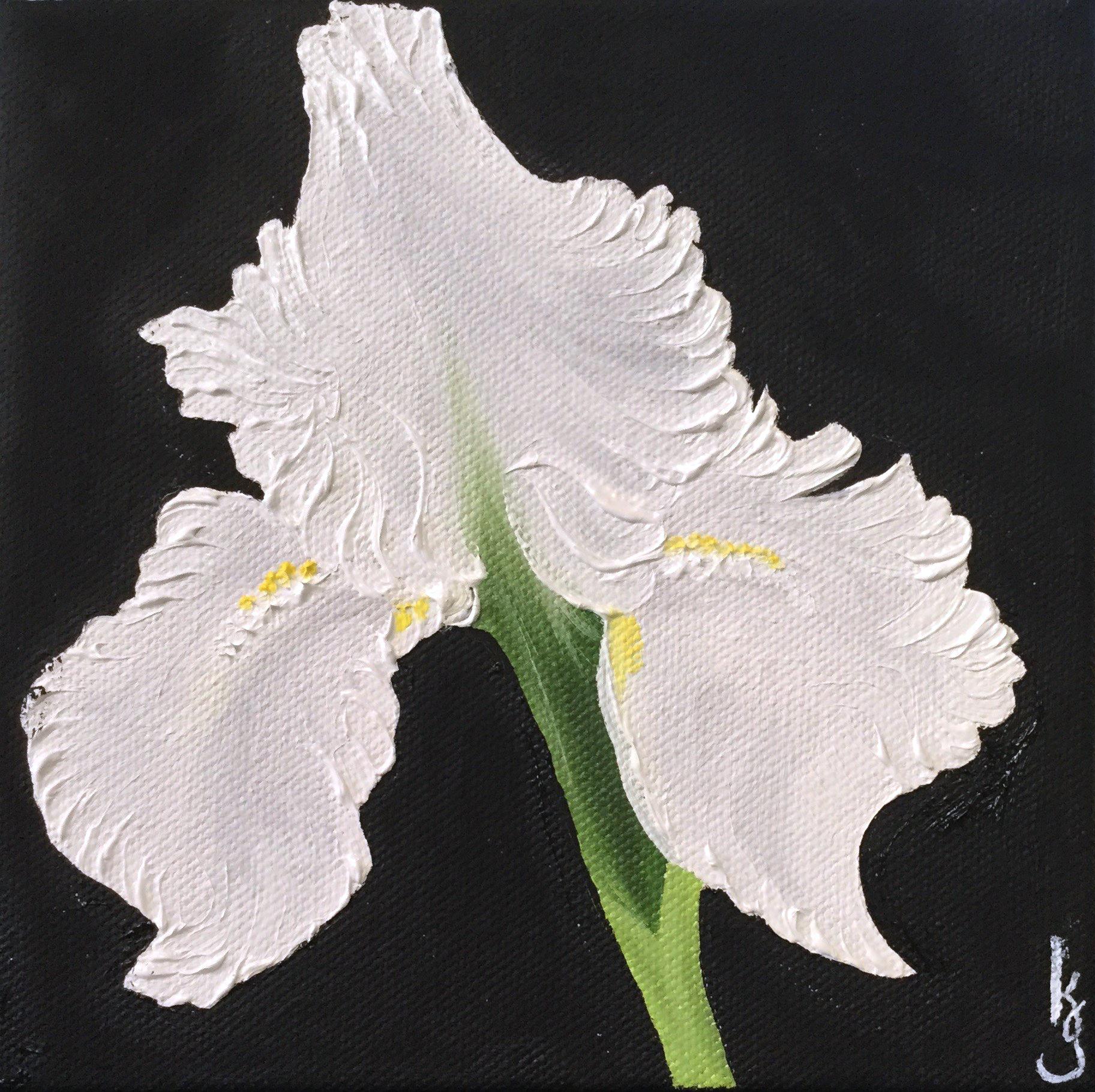 White Iris , 2017 665121752517 Oil on canvas 6 x 6 x 1.5 inches