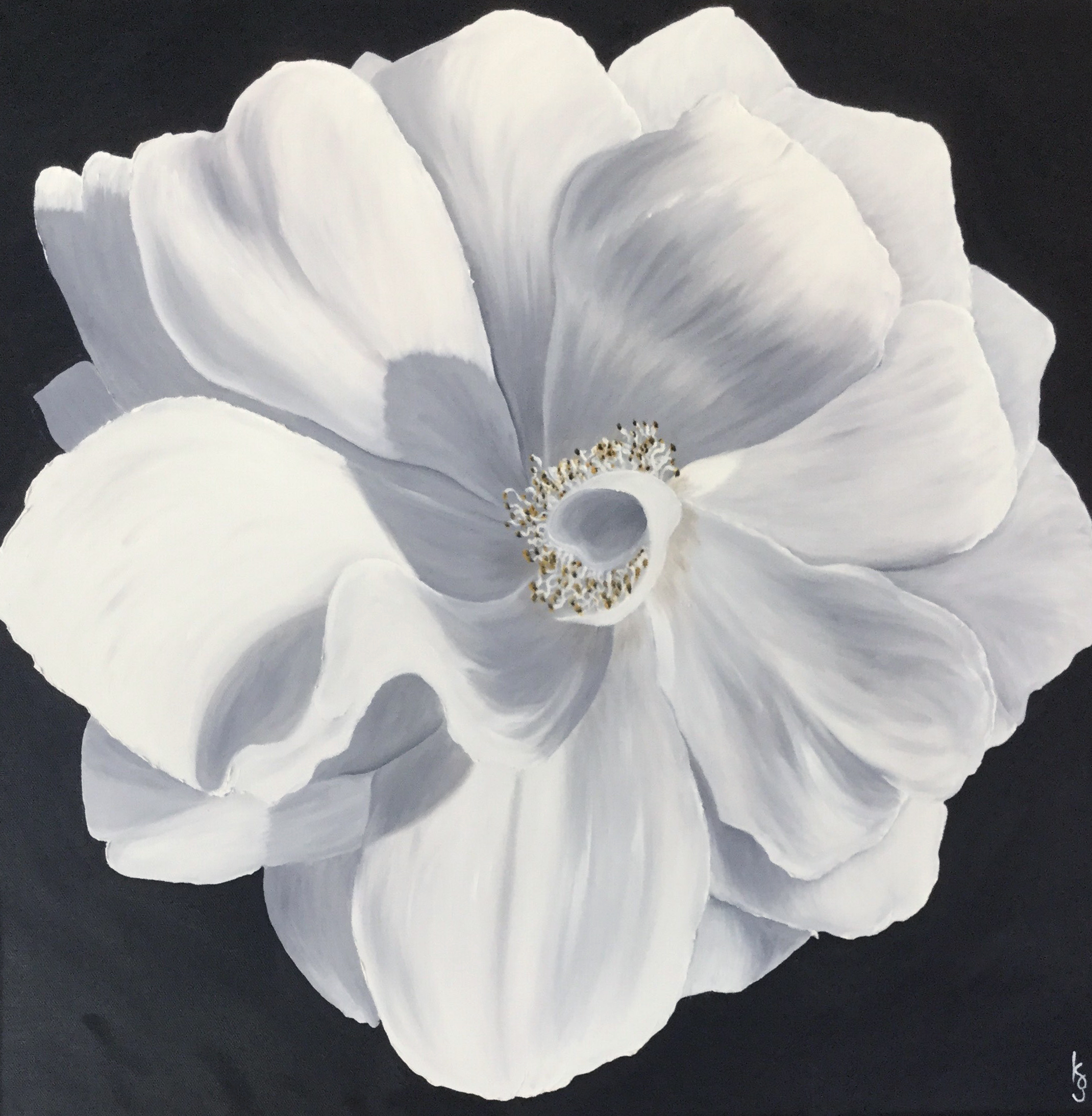 White Wood Rose  2017 Oil on canvas 24 x 24 inches